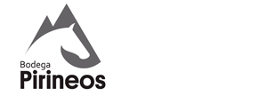 caja de 6 botellas Pirineos 3040 tinto D.O Somontano 2018 logo bodega pirineos
