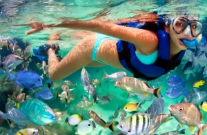 Travesía kayak + snorkel + reportaje fotos