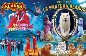 Gran circo Alaska en Cartagena