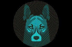 Microsonidos 2017: El Imperio del Perro (13 mayo)