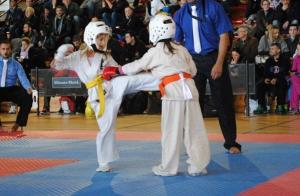1 o 3 meses de karate para niño o adulto