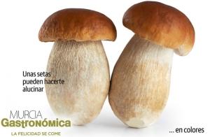 Entradas para Murcia Gastronómica 2016